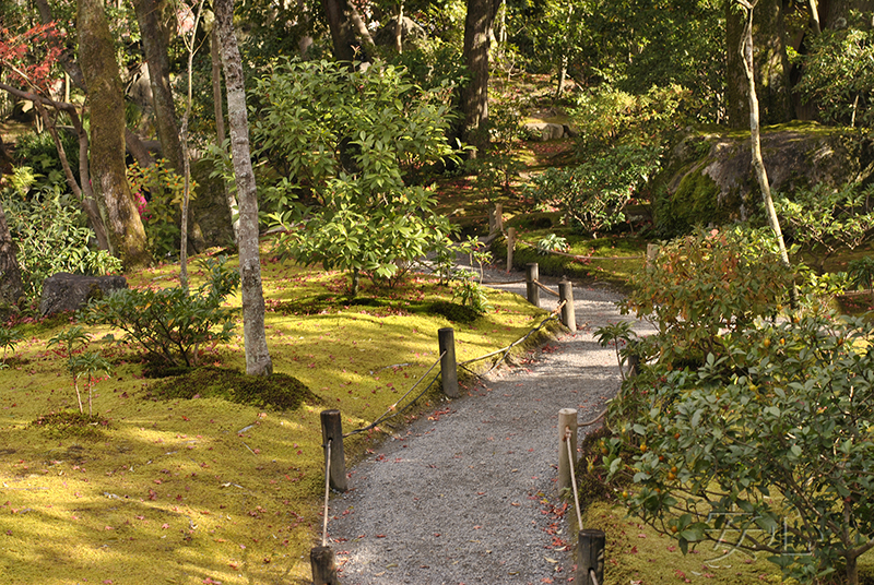 The path, Koraku-en Park, Japan